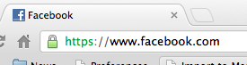 Facebook Security: Look for the web browser lock symbol to indicate a secure connection